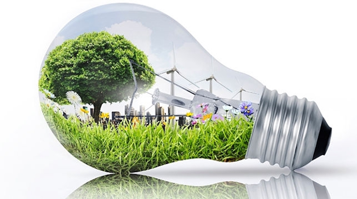 FOCUS ON GREEN ECONOMY